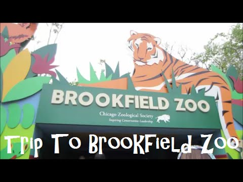 Trip To Brookfield Zoo ~ Vlog 5/14/15