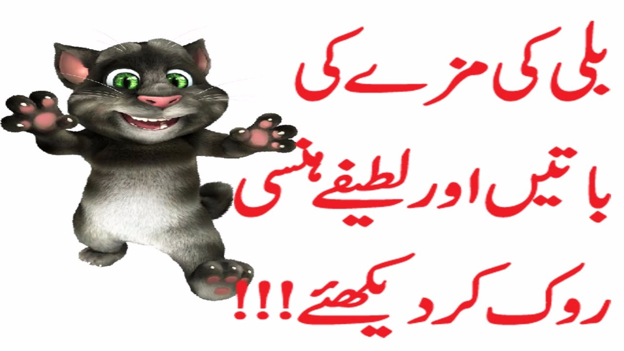 Talking Tom Cat Videos Funny Billi Punjabi Jokes Funny Punajbi Cat Urdu Hindi Listen Once