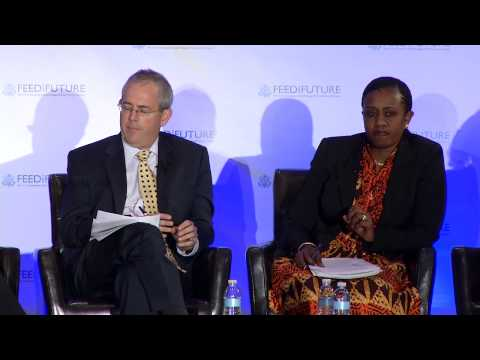Engaging the Private Sector: Leveraging for Sustainable Success