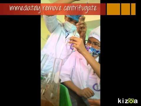 Kizoa Video Maker: Group 1: Chemists' Documentation