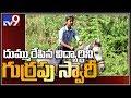 Class 10 girl rides a horse to exam hall : Kerala - TV9
