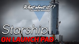 SpaceX Starship Updates & New SpaceX Moon Landing Schedule