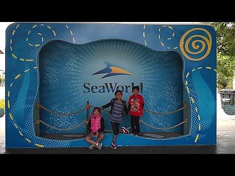 San Diego Ca, SeaWorld Tour 2015.