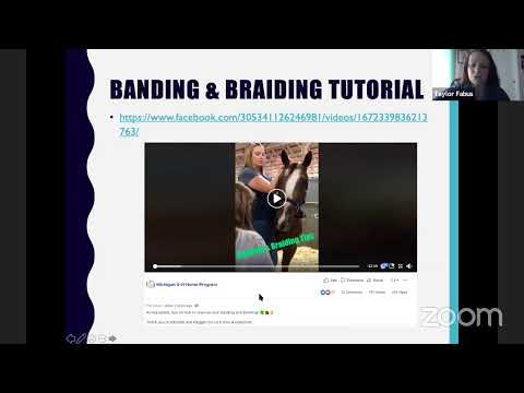 Lunch & Learn Lecture: Getting Show Ring Ready