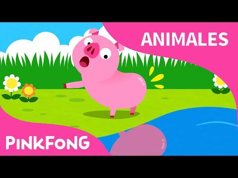 ¿Tú Has Visto Mi Colita? | Animales | PINKFONG Canciones Infantiles