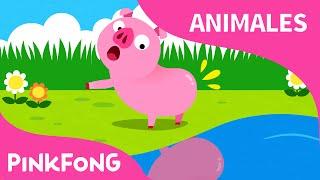 ¿Tú Has Visto Mi Colita? | Animales | PINKFONG Canciones Infantiles thumbnail