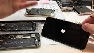 iPhone 7 - сломался через МЕСЯЦ! работает только на зарядке