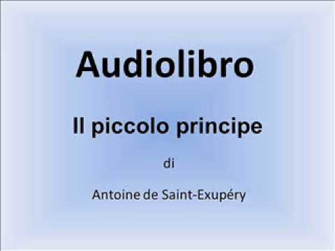 audiolibro il piccolo principe capitolo 27