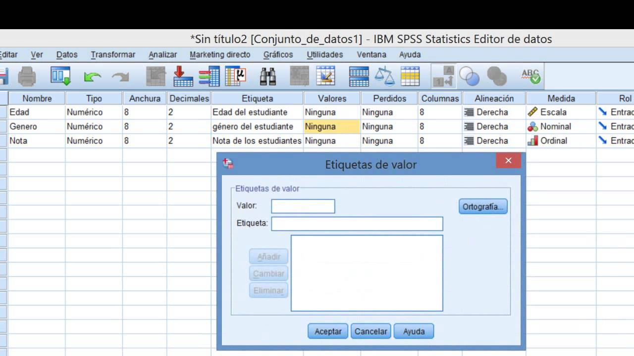Technology Management Image: IBM SPSS Tutorial Cómo Ingresar Datos