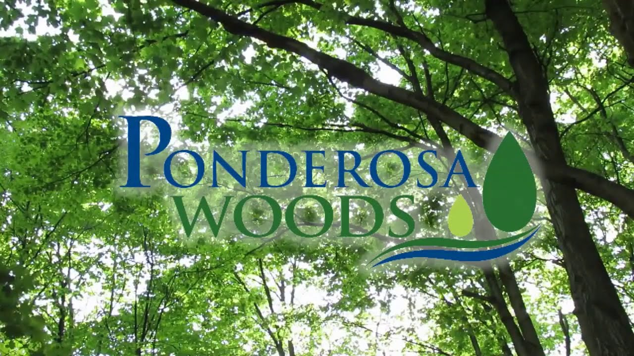 🔥 Ponderosa Woods Special Package | Last 4 Units Available! 🔥