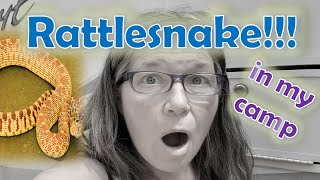 RV Life FRIED Electrical System?// RATTLESNAKE IN CAMP! Wait til You See What I Did!