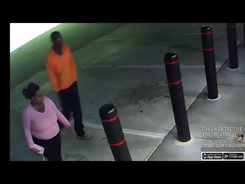 Video: Persons of interest sought in Locust Point homicide