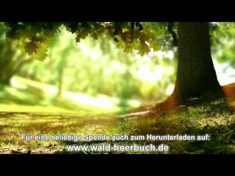 Wenn der Wald spricht - 6. Kapitel - Liebe