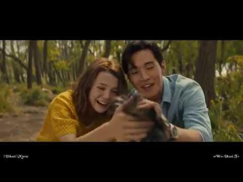 A Dog's Journey - Henry Lau 13