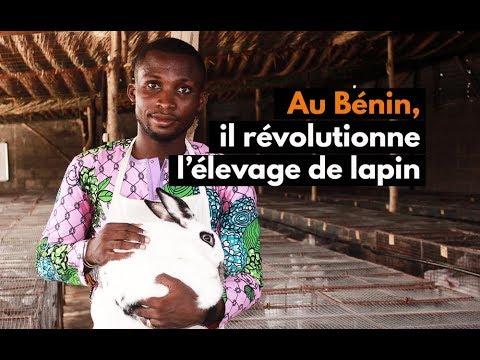 Au Bénin, il révolutionne l'élevage de lapin