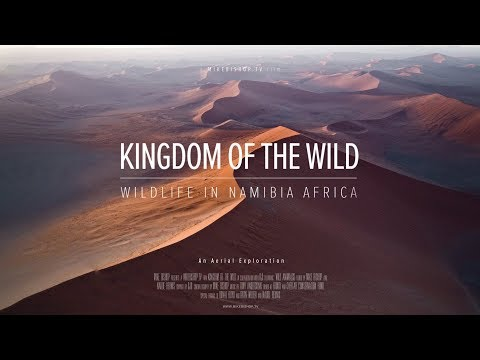 Kingdom Of The Wild - Wildlife in Namibia Africa