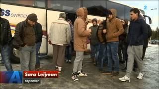 Grytans asylboende Östersund Syrier protesterar
