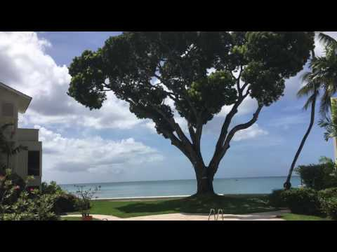 Barbados - Crystal Cove, Waves & Treasure Beach