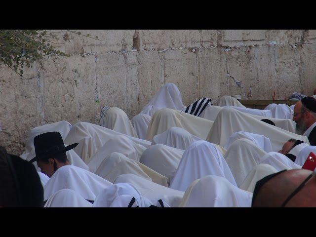 Birkat Kohanim - Sukkot 5776 - Western Wall Jerusalem
