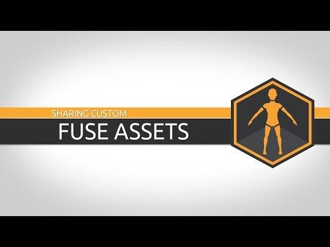 Tutorial: Sharing Custom Fuse Assets
