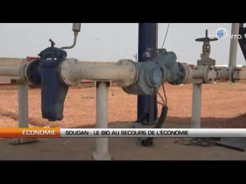 Soudan : Le bio au secours de l'économie