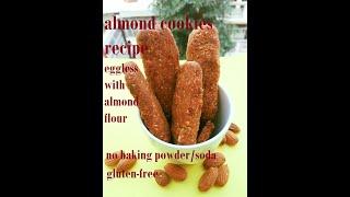 Gluten free carrot almond fingers