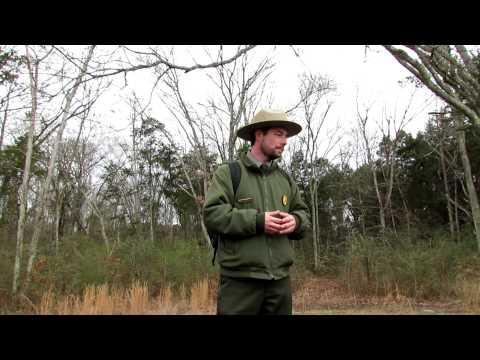 Stone's River  Ranger Jeremy Childs  MVI_3446.MOV