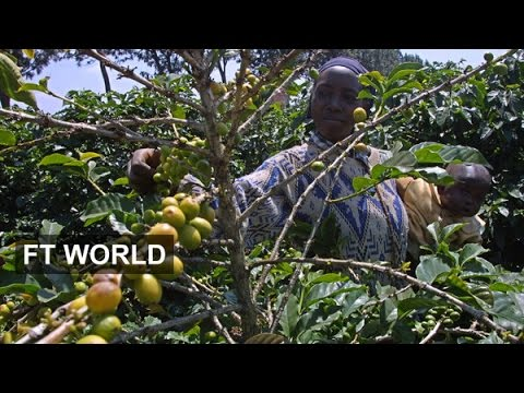 Kenya's thirst for coffee | FT World