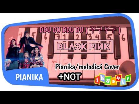 BLACKPINK - DDU DU DDU DU (뚜두뚜두) PIANIKA/MELODICA COVER + NOT IN DESCRIPTION VIDEO!!!