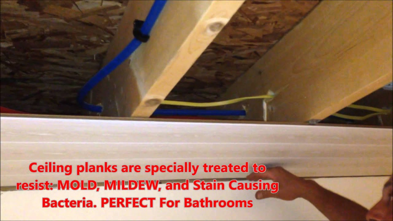 armstrong woodhaven ceiling install: diy - youtube