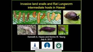 Invasive Land Snails and Rat Lungworm: Ken Hayes and Norine Yeung (HISC Brown Bag #8)