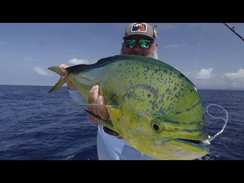 Sport Fishing Television 2019 - Bear Vs. Marlin, Episode 10