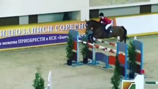 Конный спорт, лошади, horse riding, верховая езда. Музыкальный клип