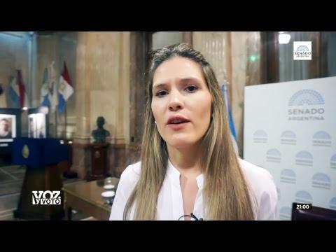VOZ Y VOTO - FINANCIAMIENTO PARTIDOS POLÍTICOS
