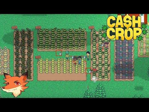 Cash Crop [FR] On fait pousser du YamYam dans sa ferme pour le revendre !