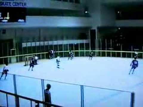 1989年アイスホッケー世界選手権...