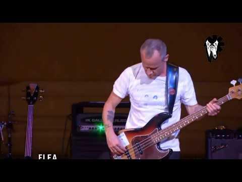 Flea  The Best Solo