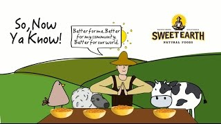 What Exactly Is This Savory Seitan ?
