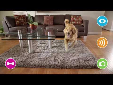 Petzi Treat Cam - WiFi Pet Camera & Treat Dispenser (720H)