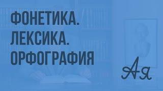 Фонетика. Лексика. Орфография. Видеоурок по русскому языку 8 класс