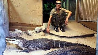 'Reptielen vaker drugsbewakers'