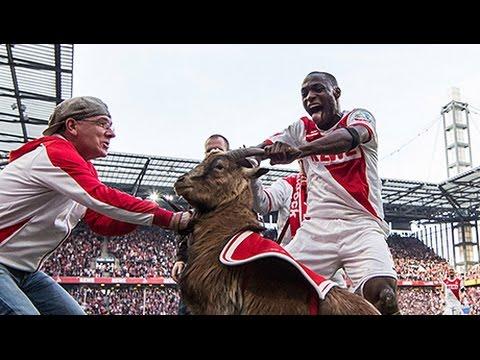 Gola świętował z... kozą!