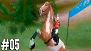 Lukt het om de wilde mustangs te redden Laura s Passie Wilde Paarden 05