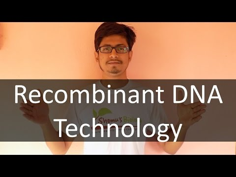 Recombinant DNA technology lecture | basics of recombinant D
