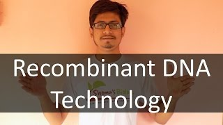 Recombinant DNA technology lecture basics of recombinant DNA