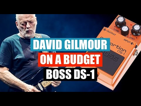 David Gilmour on a Budget - BOSS DS-1