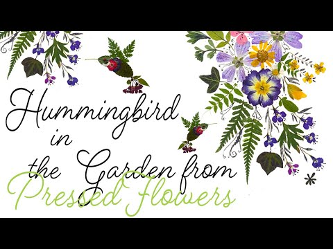 Art Tutorial from dried leaves and flowers #Hummingbirds in The Dancing Garden thumbnail