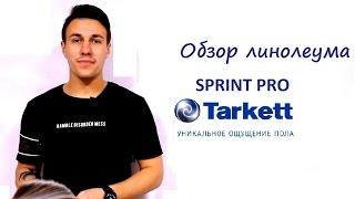 Обзор: Линолеум Tarkett sprint pro/ Таркетт cпринт про