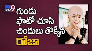 Roja Reacts To Her Morphed Pics On Social Media - TV9 Now