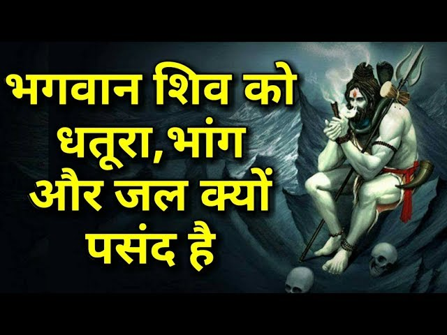 ????? ??? ?? ?????, ???? ?? ?? ????? ???? ?? | Relationship Between Lord Shiva And Cannabis In Hindi